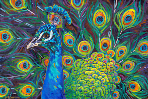 Peacock | Sally C. Evans Fine Art