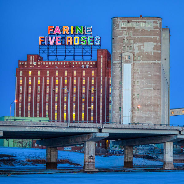 Farine Five Roses Rainbow Neon SQ - Prints