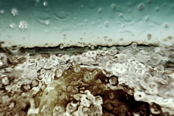 Splash Photography Art | Phillip Graybill Photography