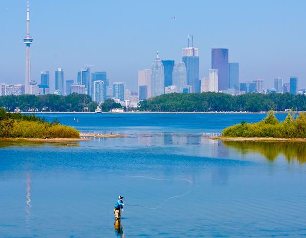 Fly Fishing Toronto Photography Art | Robert Leaper Photography