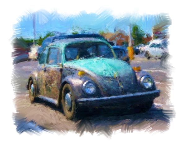 Beetle In Distress  Photography Art | Pam Phillips Photography