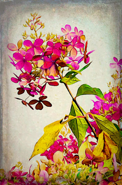 Victorian Summer Photography Art | Pam Phillips Photography