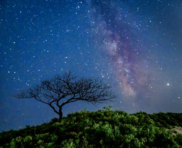 Milky Way Appears Photograph for Sale as Fine Art