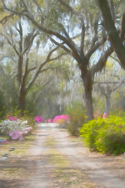 Enchanted Photography Art | Pam Phillips Photography