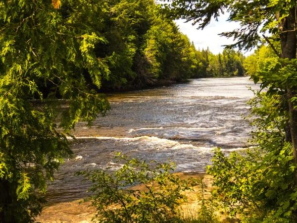 Tahquamenon River Photography Art | Lake LIfe Images