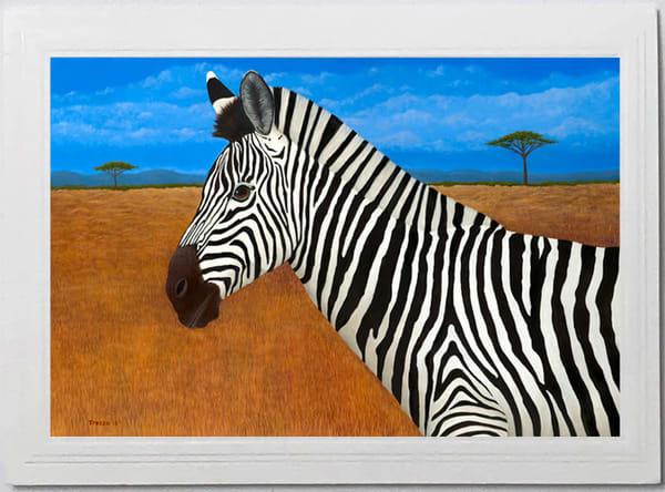 Trozzo-Zebra Card