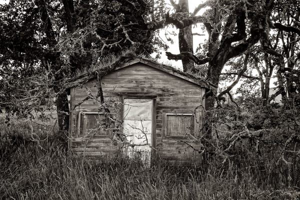 Delapidated Shack In Goshen Oregon Photography Art | Shaun McGrath Photography
