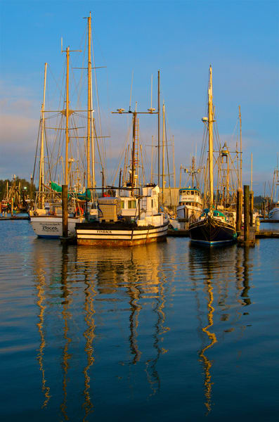 Afternoon Fishing Boats Art | Shaun McGrath Photography