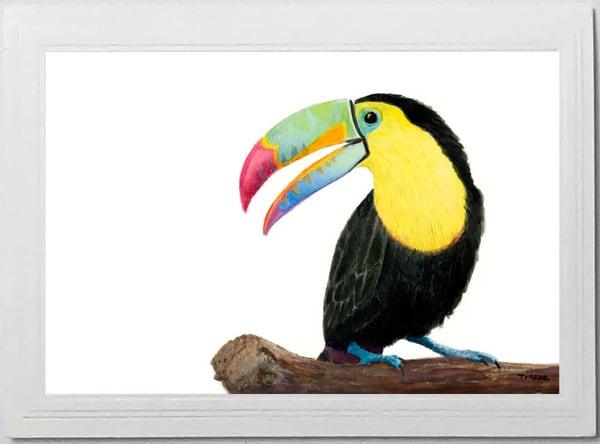 Trozzo-Toucan Card