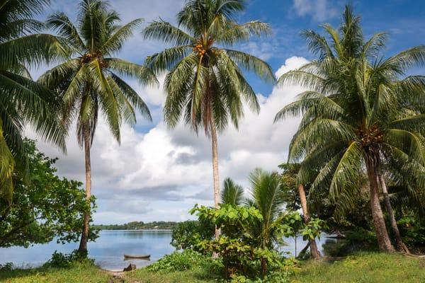 Solomon Island Shore