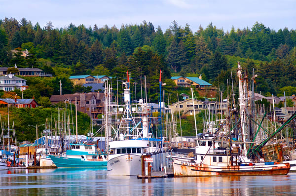 Fishing Boats In Newport, Oregon Art | Shaun McGrath Photography