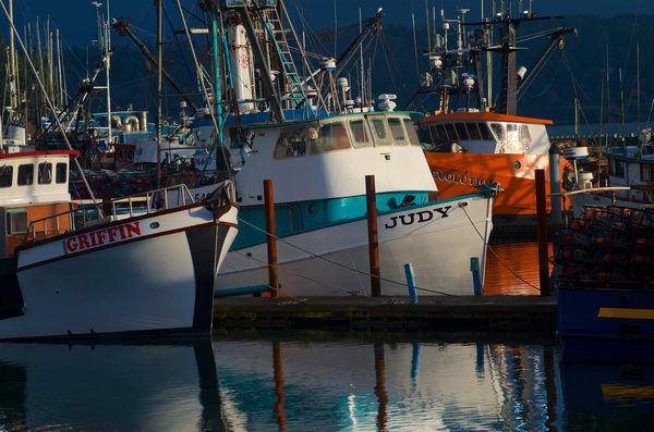 Sunlit Fishing Boats Art   Shaun McGrath Photography