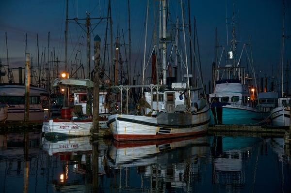 Fishing Boats in Charleston, Oregon