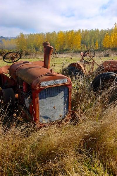 mccormick deering tractor in creswell field