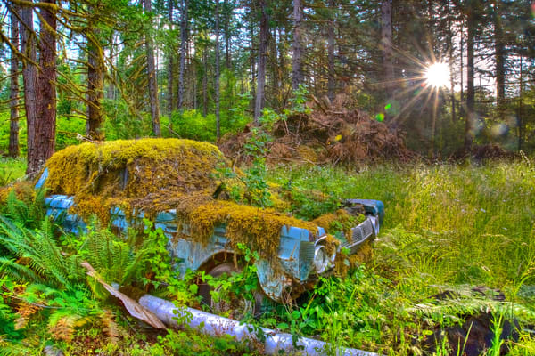 Moss Covered Mercury Comet Art | Shaun McGrath Photography