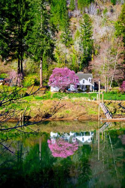 Siuslaw River In Spring Art   Shaun McGrath Photography