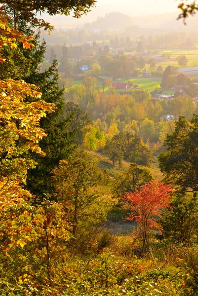 Fall View From Mt Pisgah Art | Shaun McGrath Photography