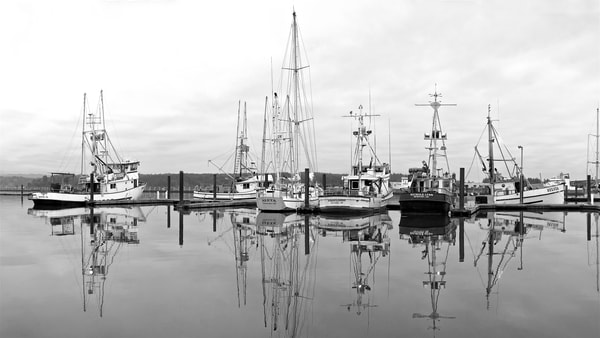 Newport Fishing Boats In B&W Art   Shaun McGrath Photography