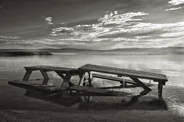   Shaun McGrath Photography