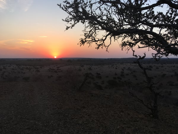 Sunset, South Africa Art | Roost Studios, Inc.
