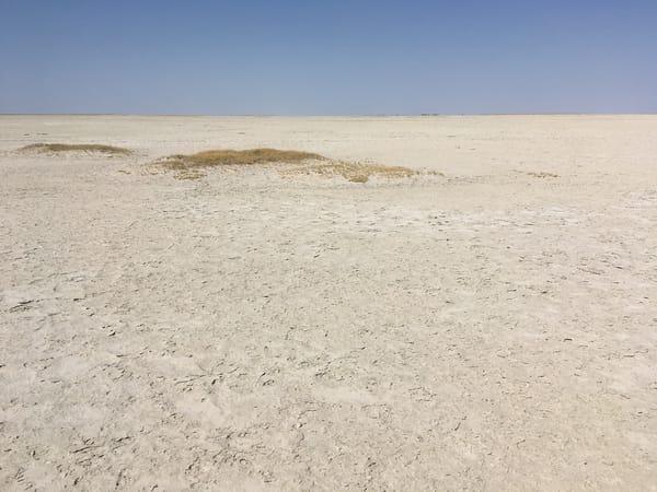 Makgadikgadi Pan, Kalahari Desert, Botswana Art | Roost Studios, Inc.