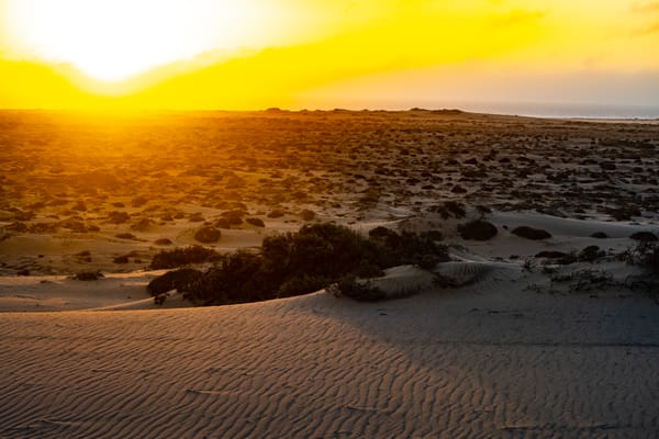 Sunset Over The South Atlantic Ocean, Namibia Art   Roost Studios, Inc.
