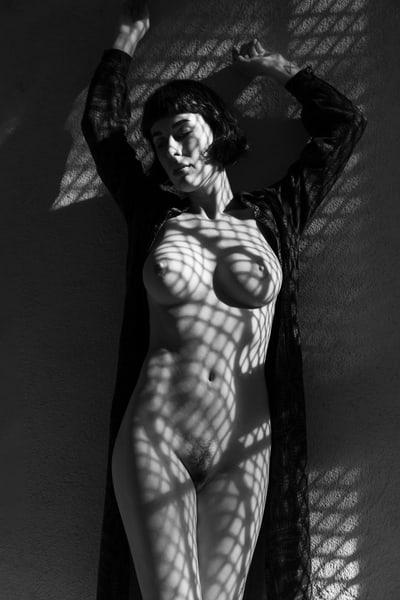 Olive Standing Photography Art   Dan Katz, Inc.