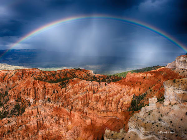 Bryce Rainbow Art | David J. West Gallery