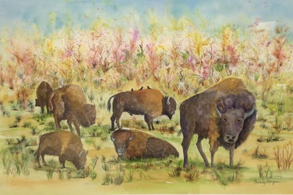 Tribute to the Prairie, From an Original Watercolor Painting