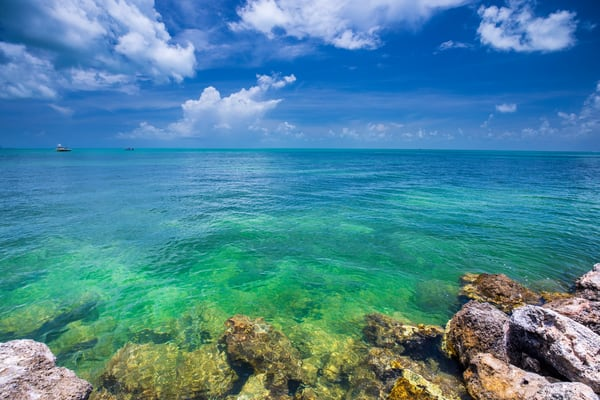 Weekend In The Keys Photography Art | Laura Tidwell Photography