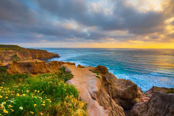 Sunset Cliffs Photography Art | Laura Tidwell Photography