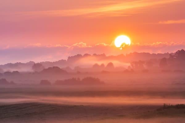 Morning Mist Photography Art | Laura Tidwell Photography