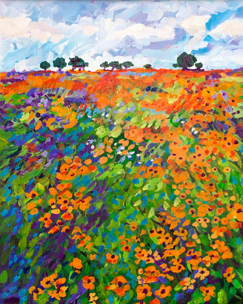 Fields Of Spring Flowers  Art | Charles Wallis