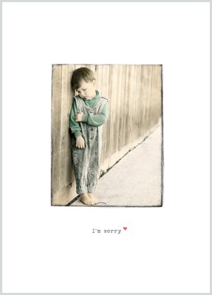 Fence I'm Sorry | Terry Lee Cafferty