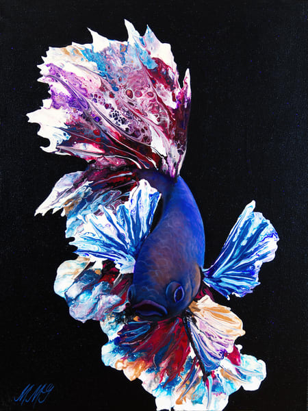 Bronco Betta Fish Art | MMG Art Studio | Fine Art Colorado Gallery
