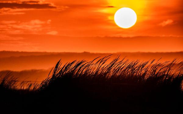 Long Point Sunset Grasses Photography Art | Michael Blanchard Inspirational Photography - Crossroads Gallery