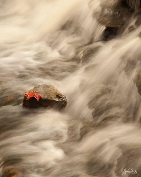 The End Of Autumn Photography Art | brucedanz