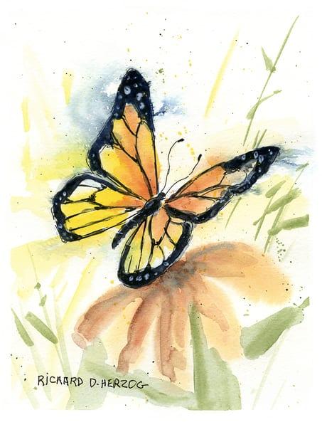 Butterfly 2 Art | Cincy Artwork