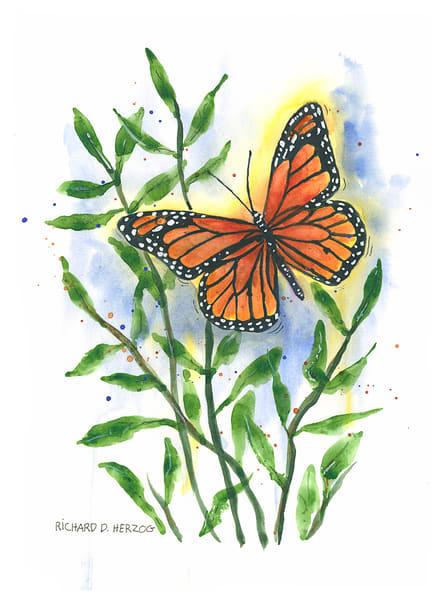 Butterfly 6 Art | Cincy Artwork