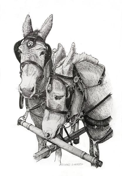 Bw Mules Art | Cincy Artwork