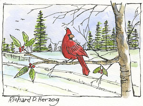 Cardinal 3 Art | Cincy Artwork