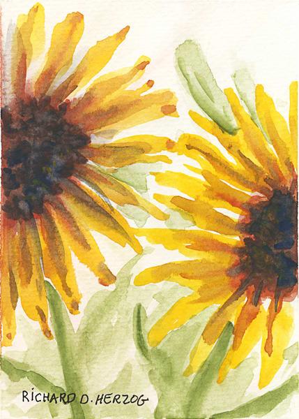 Sunflowers 2 Art | Cincy Artwork
