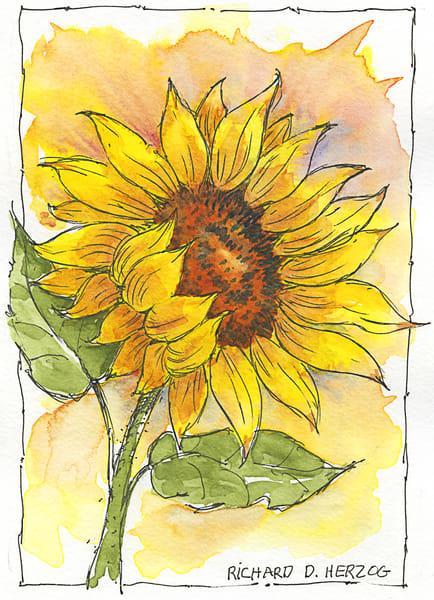 Sunflowers 4 Art | Cincy Artwork