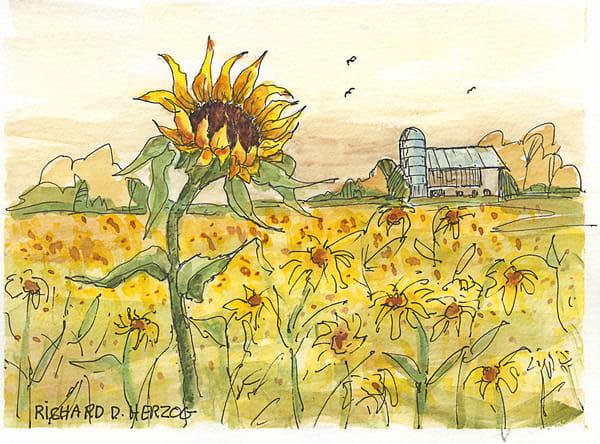 Sunflowers 5 Art | Cincy Artwork