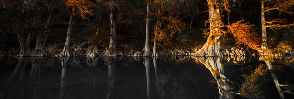 Trees reflected in the Guadalupe River on a fall day