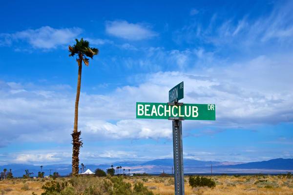 Beach Club Dr Art | Shaun McGrath Photography
