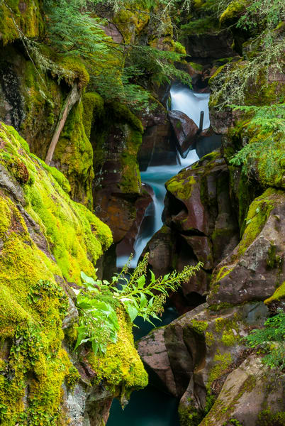 Avalanche Gorge Art | Brandon Hirt Photo