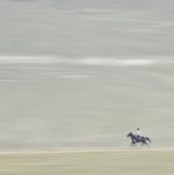 Plain Horse Art | Danny Johananoff