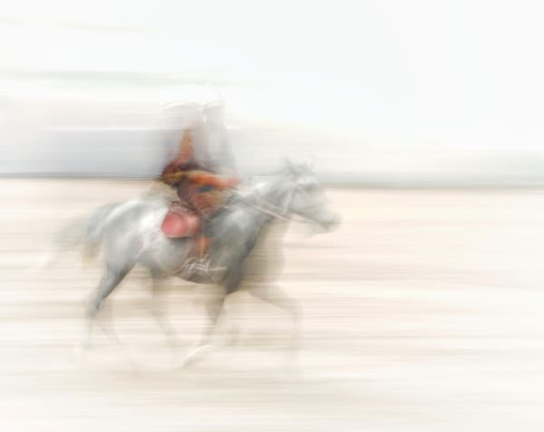 White Horse Art | Danny Johananoff