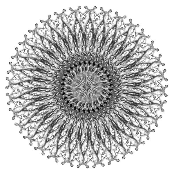 The Dandelion Art   geometricphotographica